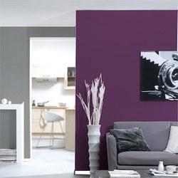 Entreprise de peinture du b timent d coration int rieure for Peinture de decoration interieure